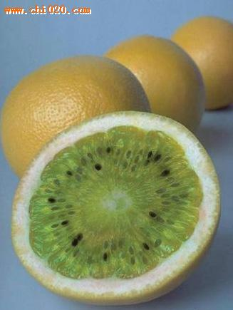 5、橙子加猕猴桃-罕见的奇珍异果